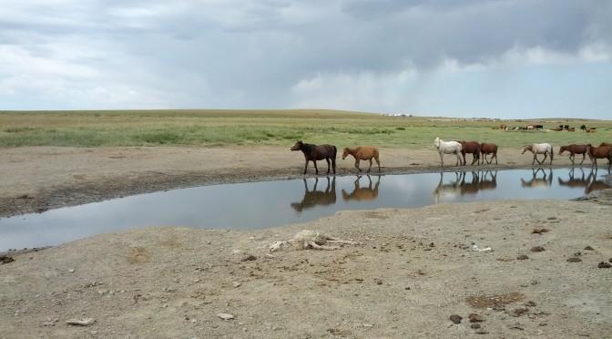Mongolia – Das Land der Wünsche