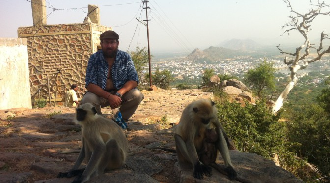 Rajasthan – Die Affen sind los!