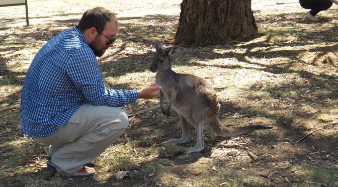 Adelaide Hills – Wilder Westen, wilde Tiere