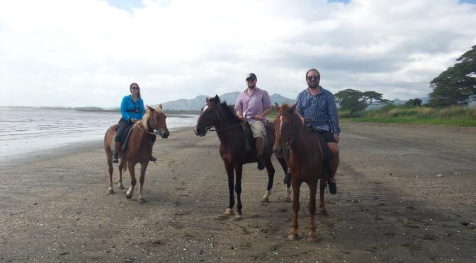Nadi- Pferd und Mee(h)r